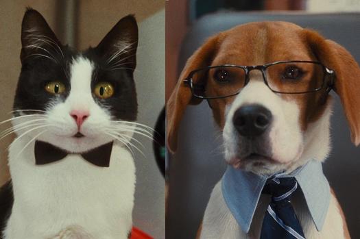 Собака против кошки: как сварить алюминий и сталь?
